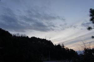 DSC02643.jpg